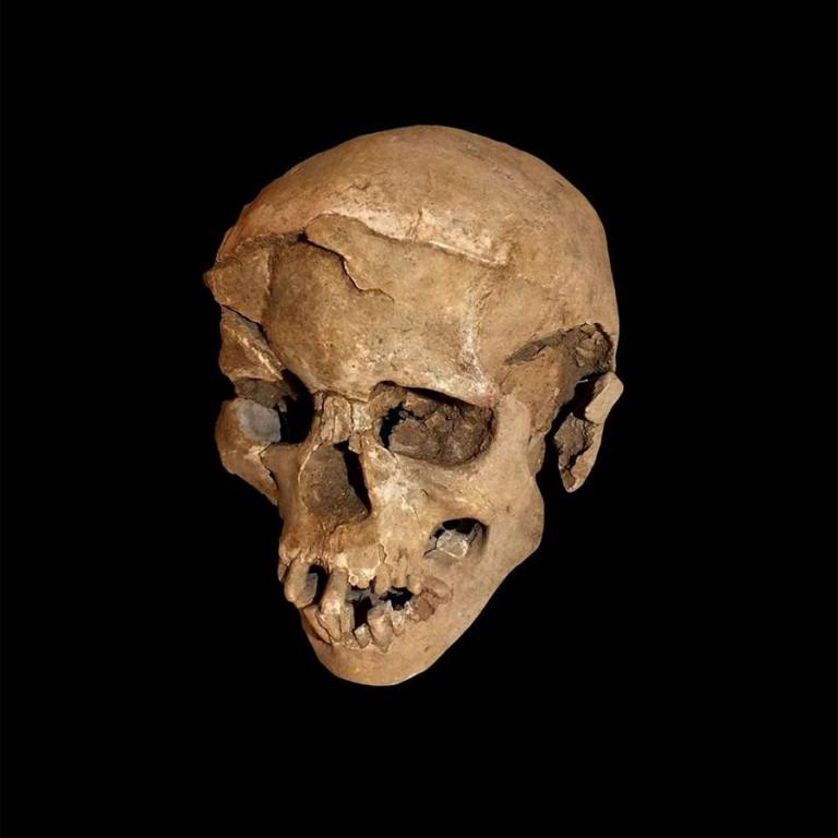 Bu antik kafatasının korkunç bir hikayesi var. (Marta Mirazon Lahr; Fabio Lahr katkısıyla)