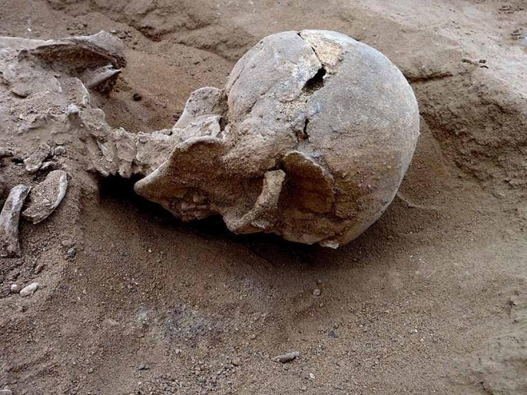 Nataruk bölgesinde bulunan bir erkek iskeletine ait kafatasının yakından görüntüsü. Kafatasının önünde ve sol tarafında, sopa gibi kesici olmayan bir cismin neden olabileceği yaralanmalara benzer birkaç lezyon görülüyor. (Marta Mirazon Lahr; Fabio Lahr katkısıyla)